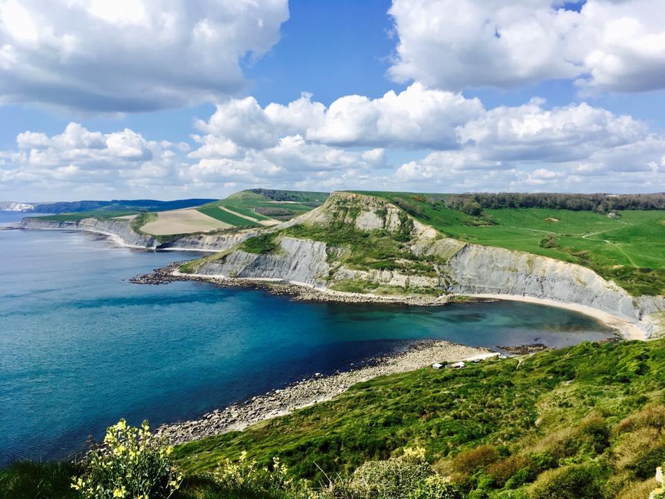 EButler_Dorset